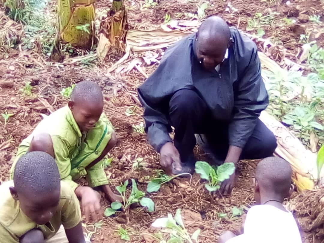 Growing Food for Vulnerable Children